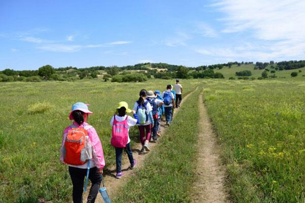 深圳乡村夏令营,每位儿童都应该去体验!